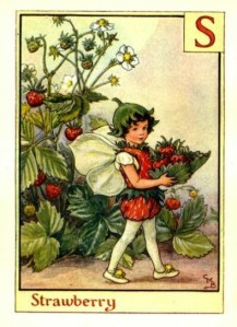 Strawberry-Flower-Fairy-Vintage-Print