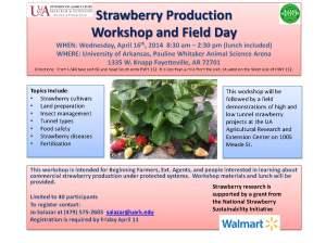 FayettevilleStrawberryWorkshop flyer